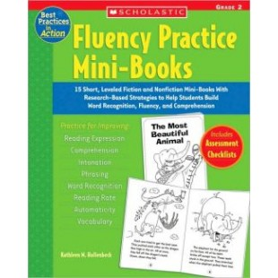 FLUENCY PRACTICE MINI-BOOKS grade 2